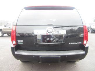 2010 Cadillac Escalade Premium Batesville, Mississippi 11