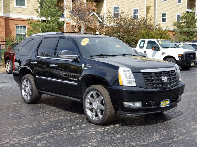 2010 Cadillac Escalade Premium | Champaign, Illinois | The Auto Mall of Champaign in Champaign Illinois