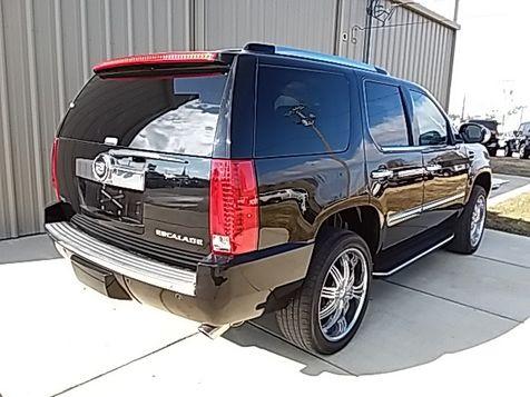 2010 Cadillac Escalade Luxury | Jackson, TN | American Motors in Jackson, TN
