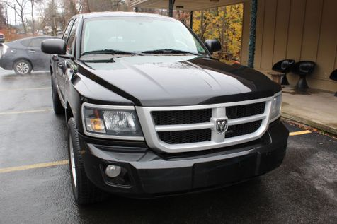 2010 Dodge Dakota Bighorn/Lonestar in Shavertown
