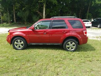 2010 Ford Escape Limited Dunnellon, FL 5