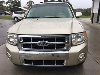 2010 Ford Escape Limited V6  Imports and More Inc  in Lenoir City, TN