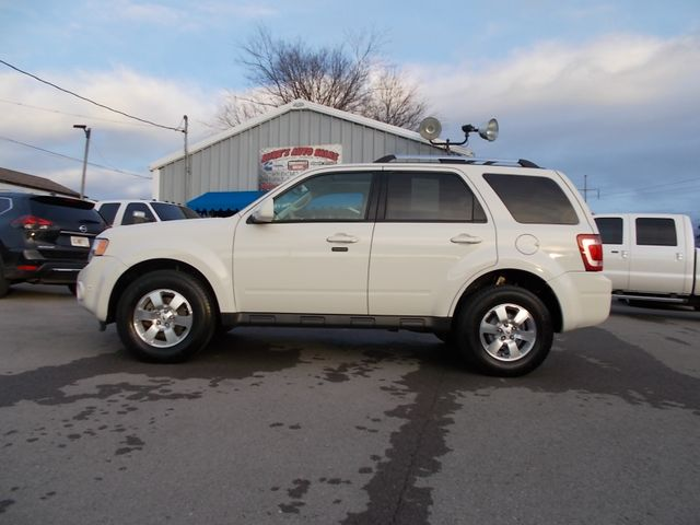 2010 Ford Escape Limited Shelbyville, TN 1