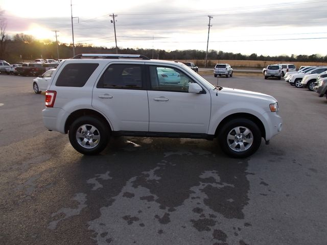2010 Ford Escape Limited Shelbyville, TN 10