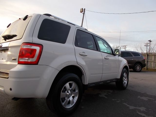 2010 Ford Escape Limited Shelbyville, TN 11