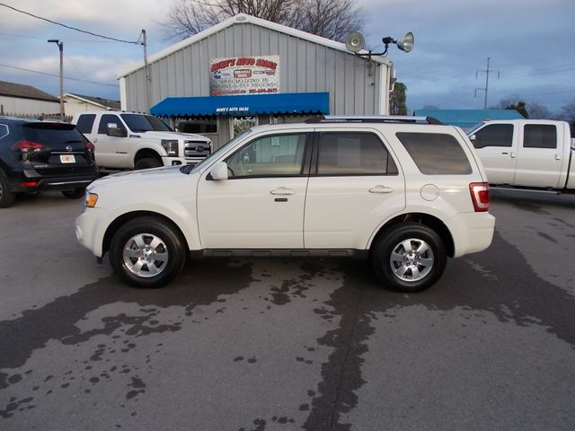2010 Ford Escape Limited Shelbyville, TN 2
