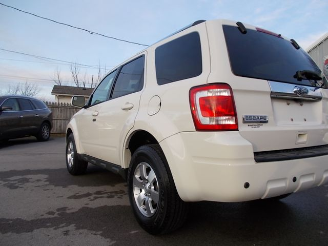 2010 Ford Escape Limited Shelbyville, TN 3