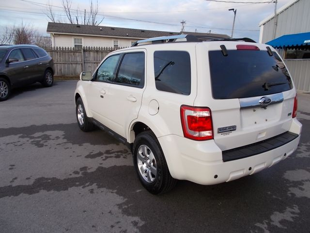 2010 Ford Escape Limited Shelbyville, TN 4