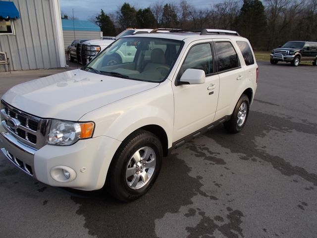 2010 Ford Escape Limited Shelbyville, TN 6