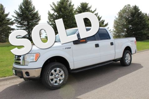 2010 Ford F-150 XLT SuperCrew 5.5-ft. Bed 4WD in Great Falls, MT
