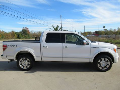 2010 Ford F-150 Platinum | Houston, TX | American Auto Centers in Houston, TX