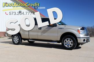 2010 Ford F-150 XLT in Jackson MO, 63755