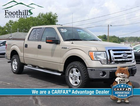 2010 Ford F-150 XLT in Maryville, TN