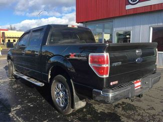 2010 Ford F-150 XLT  city Montana  Montana Motor Mall  in , Montana