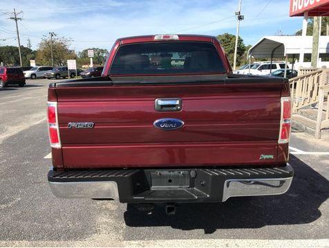 2010 Ford F-150 XLT | Myrtle Beach, South Carolina | Hudson Auto Sales in Myrtle Beach, South Carolina