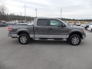 2010 Ford F-150 XLT Shelbyville, TN 10