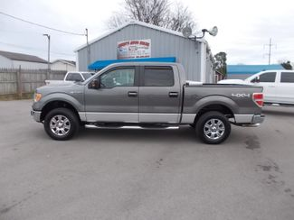 2010 Ford F-150 XLT Shelbyville, TN 2