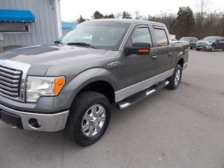 2010 Ford F-150 XLT Shelbyville, TN 6