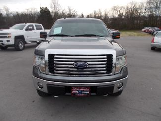 2010 Ford F-150 XLT Shelbyville, TN 7