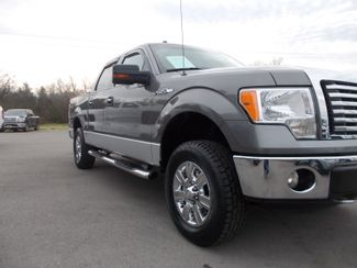 2010 Ford F-150 XLT Shelbyville, TN 8