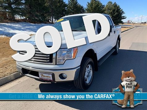 2010 Ford F150 4WD Supercrew XLT 5 1/2 in Great Falls, MT