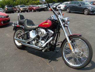 2010 Harley-Davidson Softail® Custom in Ephrata PA, 17522