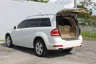 2010 Mercedes-Benz GL 450 Hollywood, Florida 45