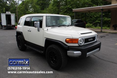 2010 Toyota FJ Cruiser  in Shavertown