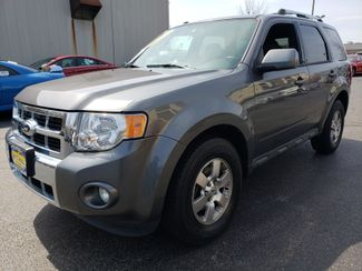 2011 Ford Escape Limited | Champaign, Illinois | The Auto Mall of Champaign in Champaign Illinois