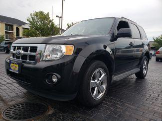 2011 Ford Escape XLT | Champaign, Illinois | The Auto Mall of Champaign in Champaign Illinois