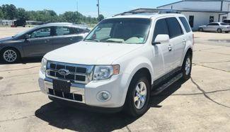 2011 Ford Escape Limited in Haughton, LA 71037