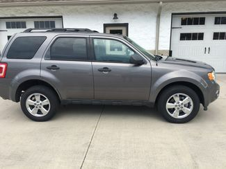 2011 Ford Escape XLT V6 2WD Imports and More Inc  in Lenoir City, TN