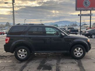 2011 Ford Escape Limited  city Montana  Montana Motor Mall  in , Montana