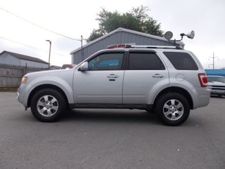 2011 Ford Escape Limited Shelbyville, TN 1