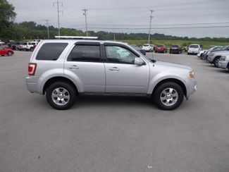 2011 Ford Escape Limited Shelbyville, TN 10