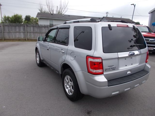 2011 Ford Escape Limited Shelbyville, TN 4