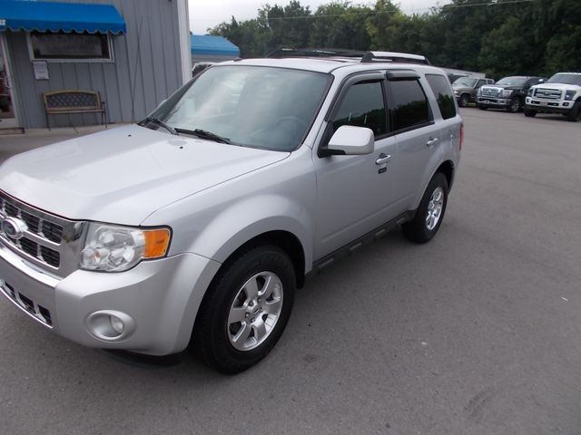 2011 Ford Escape Limited Shelbyville, TN 6