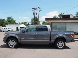 2011 Ford F-150 Platinum Englewood, CO 8