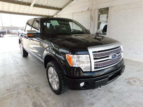 2011 Ford F-150 Platinum in New Braunfels