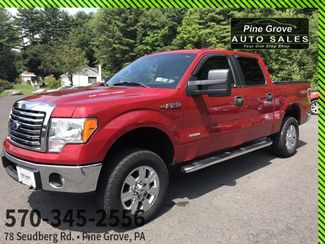 2011 Ford F-150 XLT | Pine Grove, PA | Pine Grove Auto Sales in Pine Grove