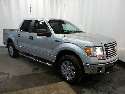 2011 Ford F-150 XLT in Victoria, MN