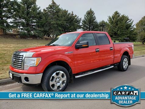 2011 Ford F150 4WD Supercrew XLT 6 1/2 in Great Falls, MT