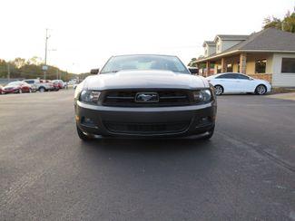 2011 Ford Mustang V6 Premium Batesville, Mississippi 4