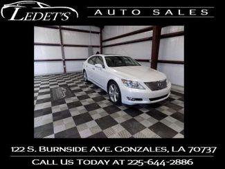 2011 Lexus LS 460 460 - Ledet's Auto Sales Gonzales_state_zip in Gonzales