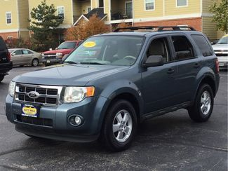 2012 Ford Escape XLT | Champaign, Illinois | The Auto Mall of Champaign in Champaign Illinois
