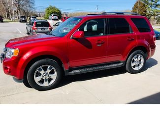 2012 Ford Escape Limited Imports and More Inc  in Lenoir City, TN