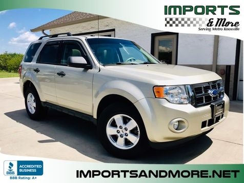 2012 Ford Escape XLT V6 in Lenoir City, TN