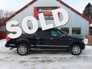 2012 Ford F-150 Platinum in Alexandria, Minnesota 56308