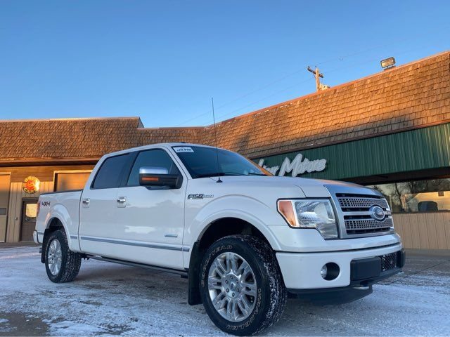 2012 Ford F-150 Platinum in Dickinson, ND 58601