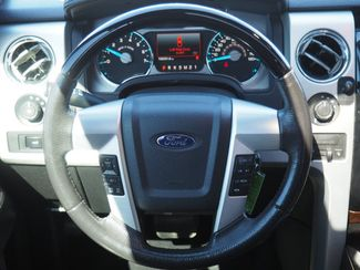 2012 Ford F-150 Platinum Englewood, CO 11